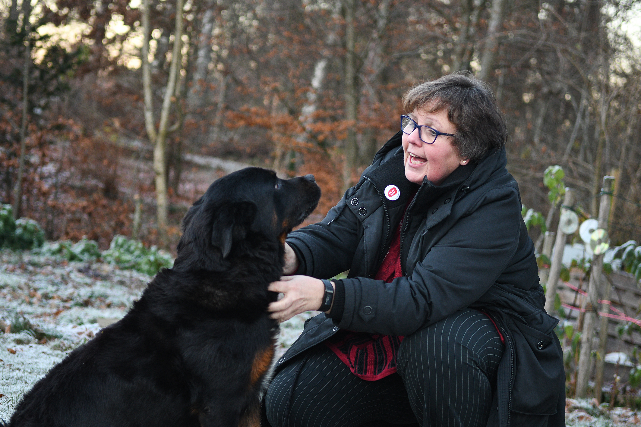 Promenader i skogen med rotweilern Zigge är en viktig avkoppling för Lena.